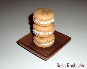La recette du jour: Macarons au saumon, crème de raifort à l'aneth dans Amuses bouche express p1040373_modifie-1-copie-640x480-300x236